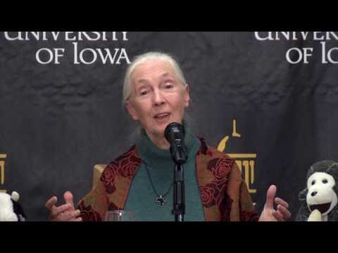 Jane Goodall visits the University of Iowa on YouTube