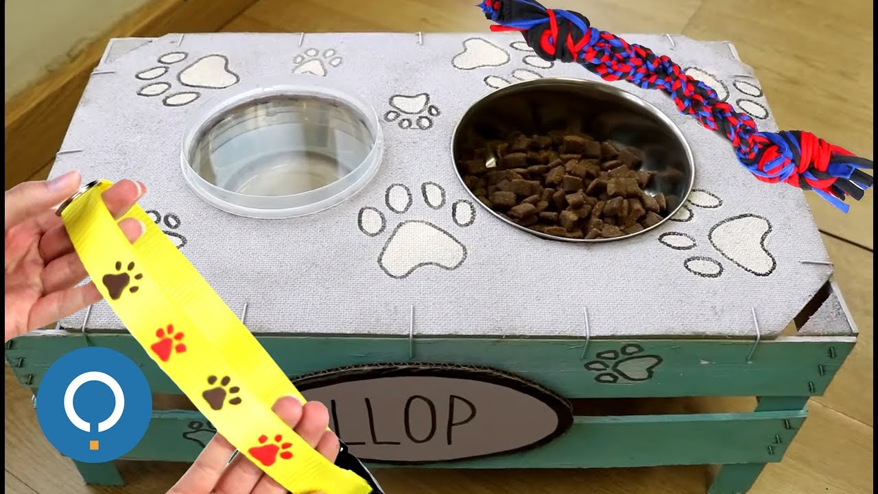Manualidades f ciles para perros youtube - Manualidades recicladas para decorar ...