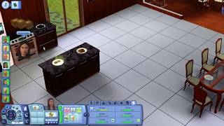 I hate my Sims 3 roommates. Gameplay/Commentary