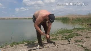 Рыбалка на маныче НЕ ОБЫЧНЫЙ КАРАСЬ
