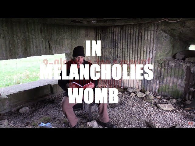 IN MELANCHOLIES WOMB ~ A Poem by Shane M. O'Sullivan