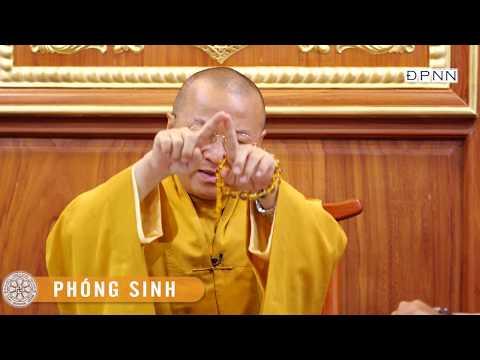 TT. Thích Nhật Từ trả lời phỏng vấn báo Thanh Niên tại chùa Giác Ngộ