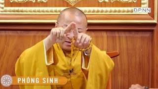 TT. Thích Nhật Từ trả lời phỏng vấn báo Thanh Niên tại chùa Giác Ngộ, ngày 16-04-2018