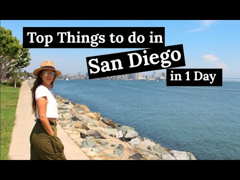 Top Things To Do In San Diego In 1 Day