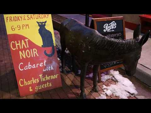 The Chat Noir Cabaret