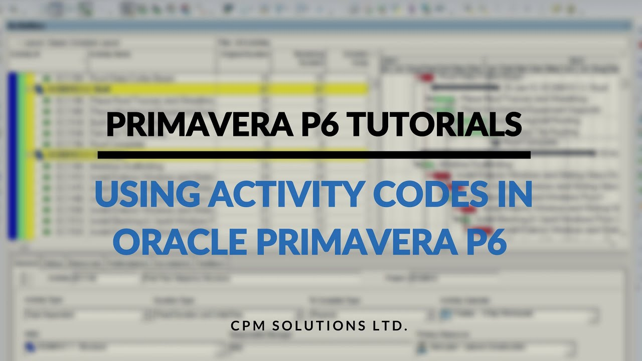 Primavera p6 tutorial 1 using activity codes in oracle primavera primavera p6 tutorial 1 using activity codes in oracle primavera p6 youtube baditri Image collections