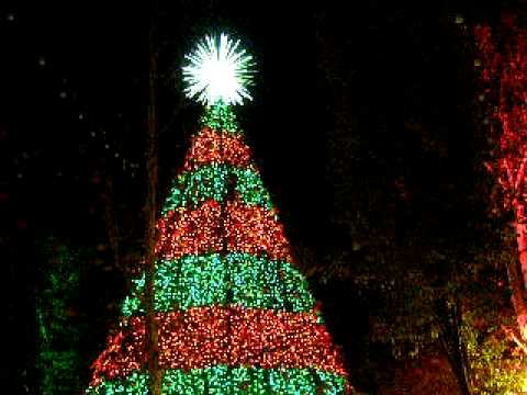 christmas tree lights silver dollar city branson momov youtube - When Does Branson Mo Decorate For Christmas