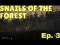 Snails of the forest part3