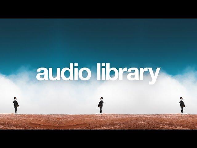 Voices — Metro Vice [Vlog No Copyright Music]
