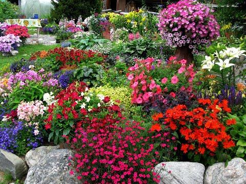 За полярным кругом. Сергей Чекалин. Музыка ветра. Flowers. Very beautiful music.