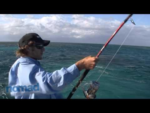 Nomad Sportfishing - Fishing Blue Holes