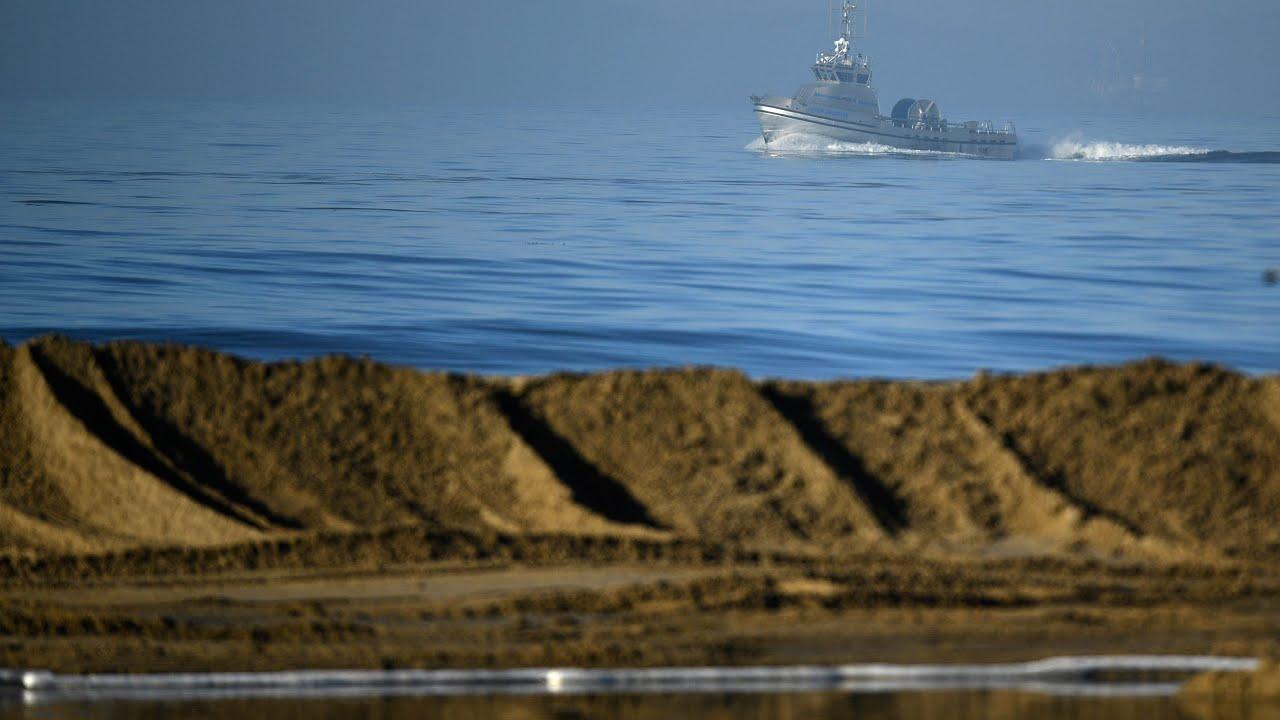 'Environmental catastrophe': Massive oil spill fouls beaches, wildlife ...