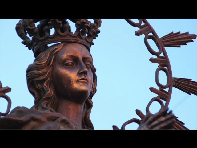 Vídeo: La Agrupación de Cofradías celebró el Día de la Inmaculada Concepción con la procesión de estandartes