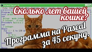 Программа на Pascal за 45 секунд. Сколько лет вашей  кошке?