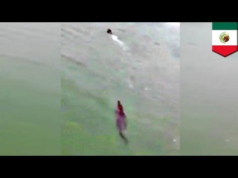 VIDEO: Un touriste échappe de peu à une attaque de crocodile
