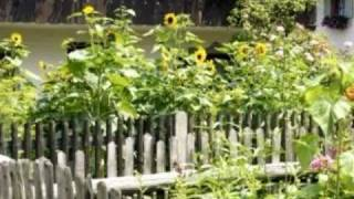 Vegetable Garden Fencing, Vegetable Garden Fence Ideas