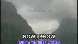 Karaoke: Born For You (David Pomeranz)