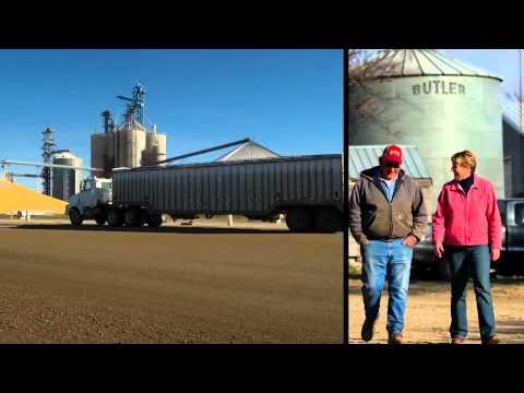 Wheat Growers_ShelleyFuerst - Grain Originator
