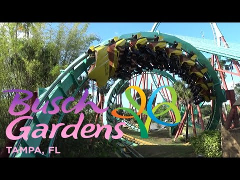 The Roller Coasters Of Busch Gardens Tampa (2017)