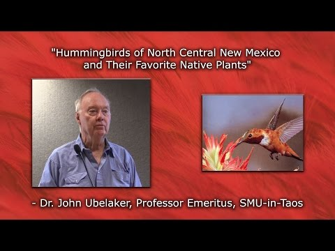 """Hummingbirds of North Central New Mexico and Their Favorite Native Plants"" - Dr. John Ubelaker"