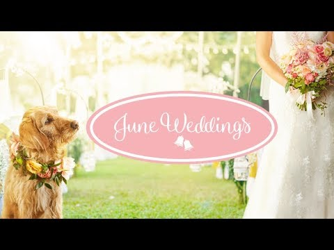 Hallmark Announced Its June Weddings Lineup And We're Falling In Love Already