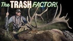 Hunting Elk in Colorado - Guy Eastman Hunts Nontypical Bull