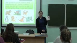 """Урок """"Animals"""" 1 часть, Давыдова А.В."""