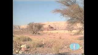 Guide21 - О, Израиль, Израиль... Зиновий Гердт (1 часть)(, 2012-03-05T22:21:50.000Z)