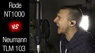 Neumann TLM 103 vs Rode NT1000 - Mic Comparison (Vocal, Scream, Guitar)