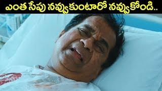 ఎంత సేపు నవ్వుకుంటారో నవ్వుకోండి | Brahmanandam Ultimate Comedy Scenes | Volga Videos