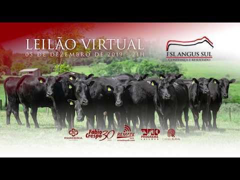 Leilão Virtual FSL ANGUS SUL