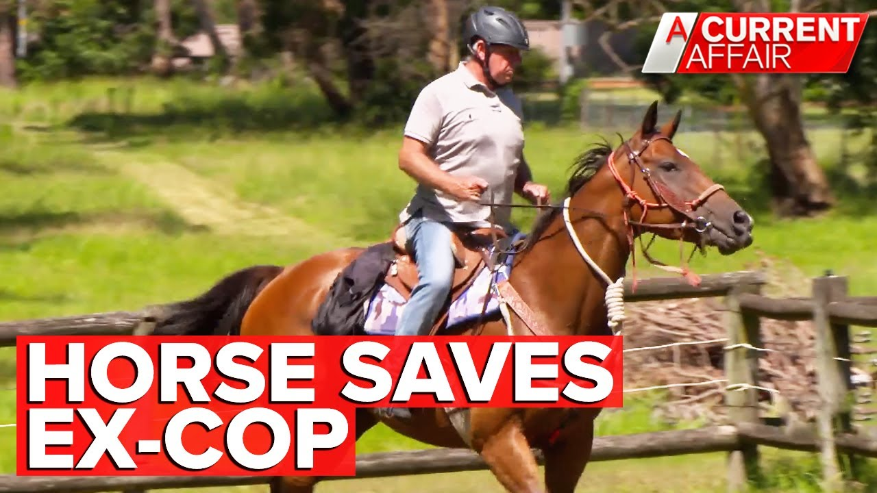 How a rescue horse saved an ex-cop with PTSD | A Current Affair