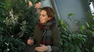 Vidzemes TV: Mājā un sētā. LU Botāniskais dārzs (13.12.2019.)