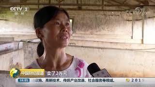 [中国财经报道]养殖户亏损 国家多举措力促生猪生产| CCTV财经
