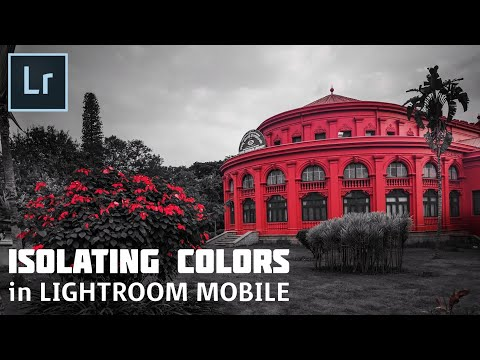 How to Edit in Lightroom Mobile | Isolating Colors | Color Splash | Android | iPhone