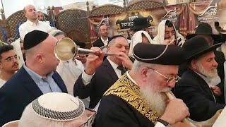 טיסת תפילה מיוחדת לעצירת הקורונה של הרבנים המקובלים  הרב עמאר