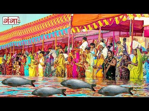 बरत राउर कइली मछरिया | New Chhath Geet 2018 | Chhath Puja Songs Special 2018