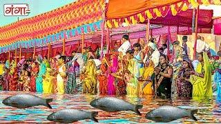 बरत राउर कइली मछरिया new chhath geet 2017 chhath puja songs special 2017