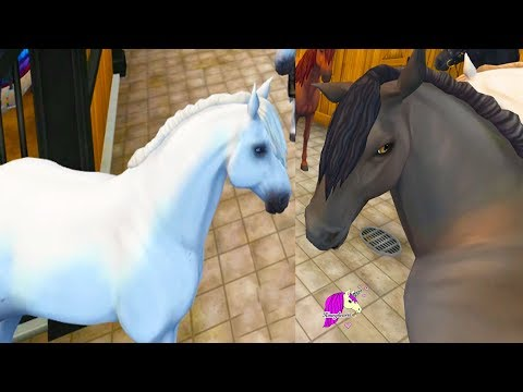 Buying ALL The New Andalusian Horses ! Star Stable Online Horse Game Video