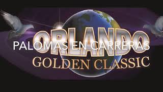 ORLANDO GOLDEN CLASIC LOS ESPERAMOS