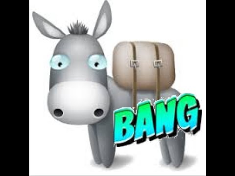 Sick Air shot by banging donkey