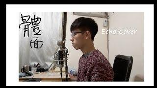 于文文-體面  電影《前任3:再見前任》插曲 Echo Cover