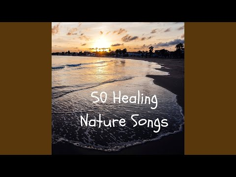 Wellness Feeling (Relaxing Natural Ambiences for Meditation and Sleep)