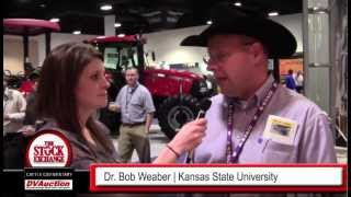 Dr Bob Weaber, Beef Cattle Specialist, Kansas State University