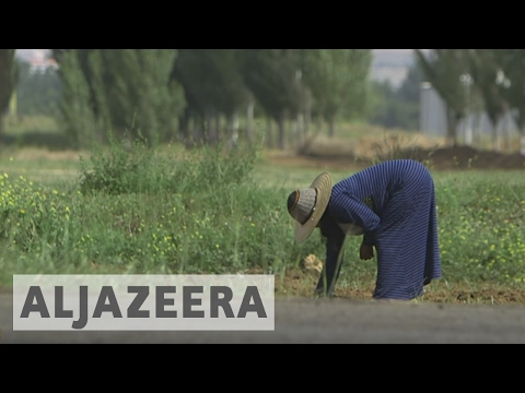 The Mother Refugees - Al Jazeera World
