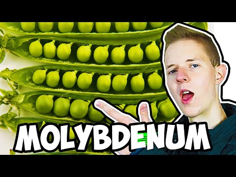 Molybdenum: All You Need to Know | Nutrients 101