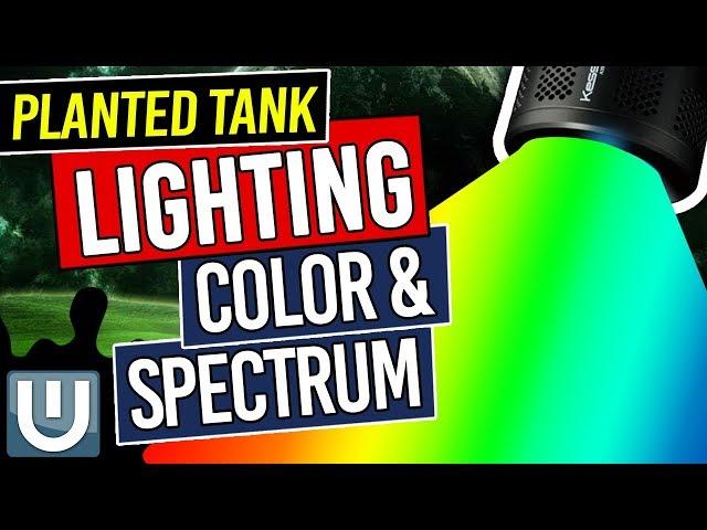 Color Spectrum in Planted Tank Lighting - Planted Aquarium Lighting Guide - Part 3