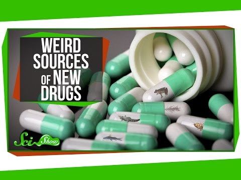 Cockroaches, Alligators & Other Weird Sources of New Drugs