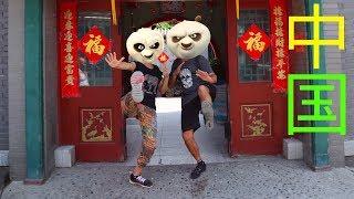 #3 Китай. Последние выжившие панды. Заповедник в Чэнду