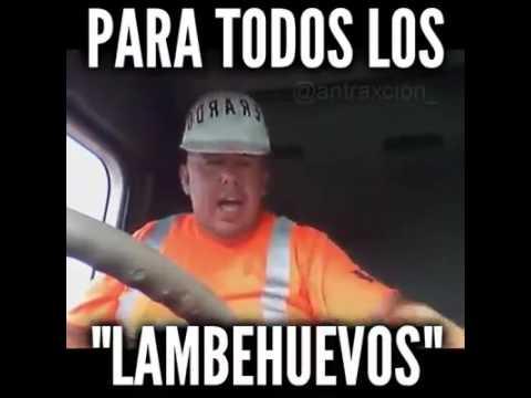 PARA LOS LAMBE HUEVOS!!!!!!!!!!!!
